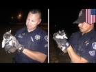 Animal rescue: Two cops save kitten from drain pipe using half-eaten burrito - TomoNews
