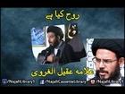 Rooh Kya Hai | Allama Aqeel-ul-Gharvi P-2
