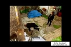 Italian TV Bondage scenes (tape gag + cleave gag)